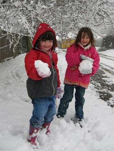 Snowy wildlife garden
