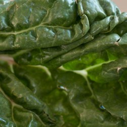 06_Green-spinach