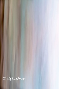 Abstract_intentional camera movement_03