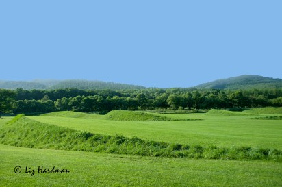 Earth-garden-Torachi