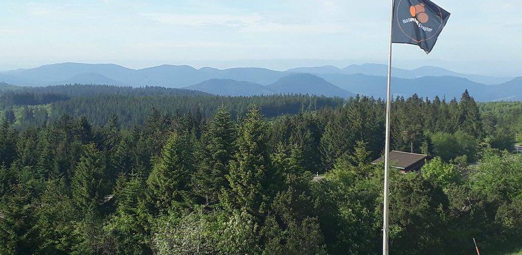cropped-NPC-Schwarzwald-1.jpg