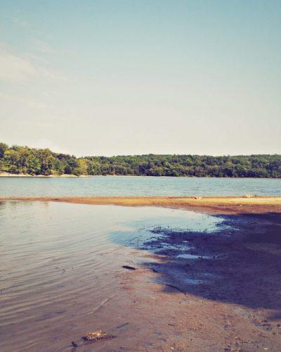 kentucky lake shore photo
