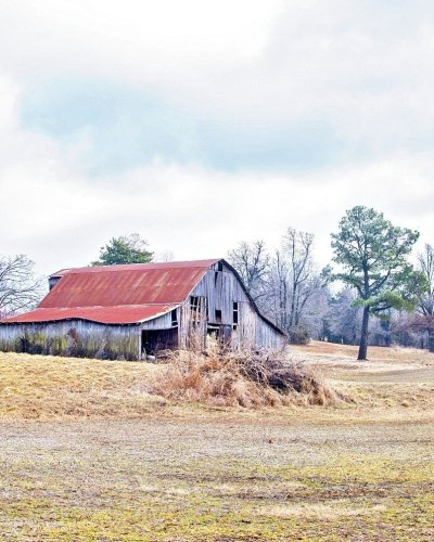 rusted red tin roof on old grey barn on a straw and yellow field in Kentucky