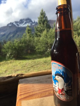View from Puesto Huemul with a local brewed ale