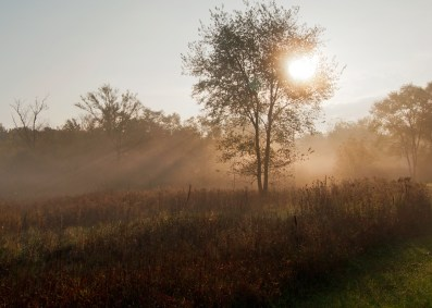 green-lake-foggy-sunbeamsdsc_0009-ps