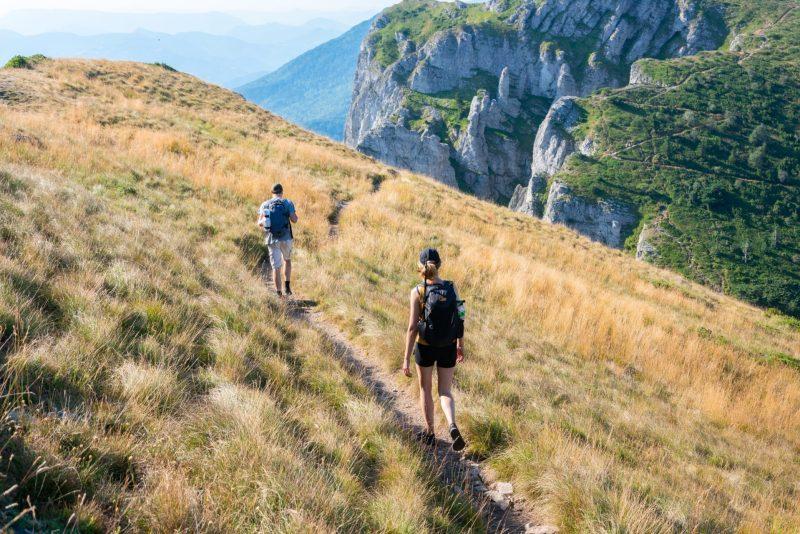 草原をハイキング