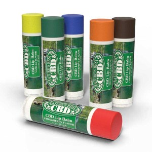 Nature's Best CBD Lip Balm 6 Assorted Flavors