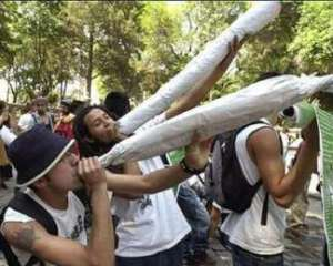 marijuana lovers in mexico