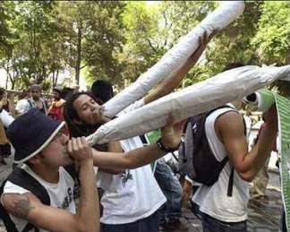 new mexico marijuana protest