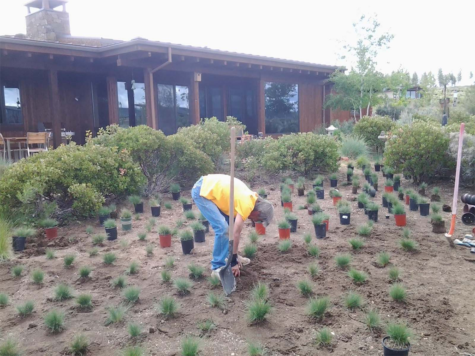 Xeriscape landscape services for homes and businesses