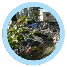 Natures Plan landscape architecture in Bend Oregon