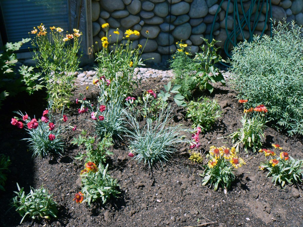 Drought-tolerant-landscaping-Bend-Oregon