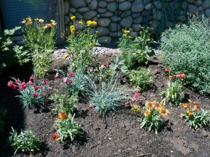 Drought-tolerant-landscaping-Bend-Oregon