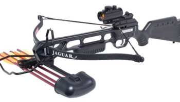 Gun Hunting vs  Crossbow - Pros and Cons
