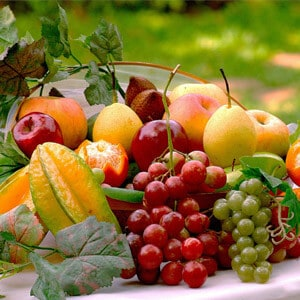 Fresh Fruits for camping
