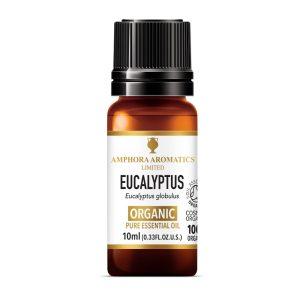 Amphora Aromatics Eucalyptus Organic Essential Oil
