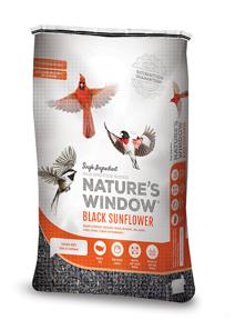 Image of Nature's Window Black Sunflower - 3/4 View