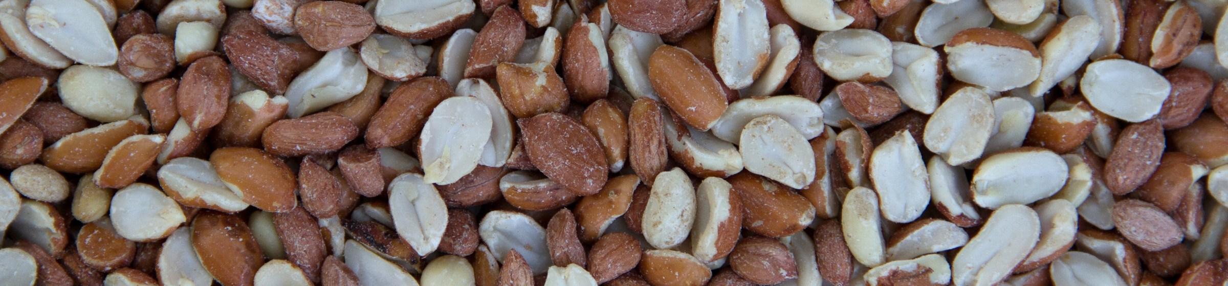 Image of peanut splits wild bird food