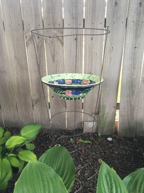 tomato cage birdbath