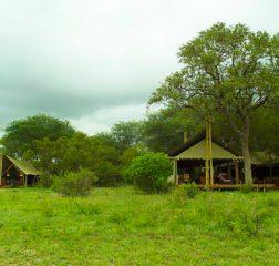 Camp (6)