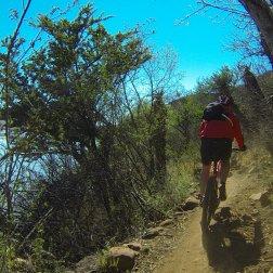 Riding in Kruger