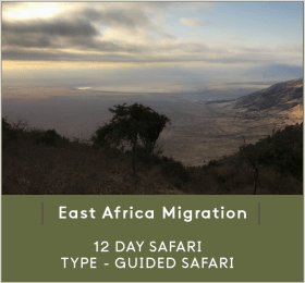 EAST-AFRICA-MIGR