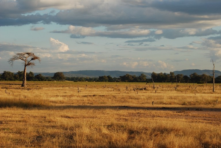 South Luangwa NP landscape.jpg