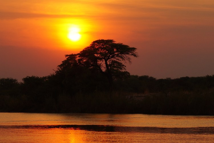 Africa Safaris Botswana