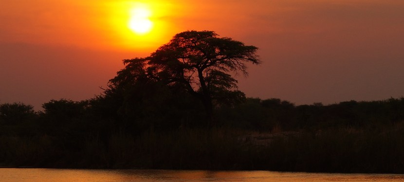 Videos from Africa