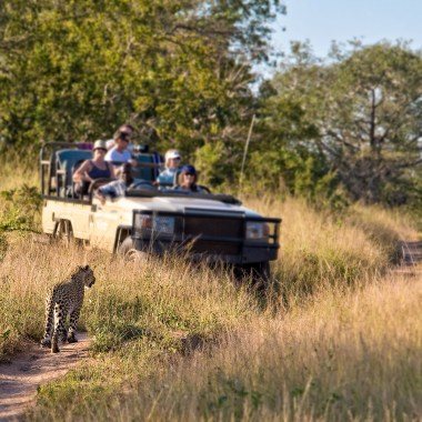 Luxury Kruger Park Safari