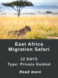 East-Africa-Migration-Safari