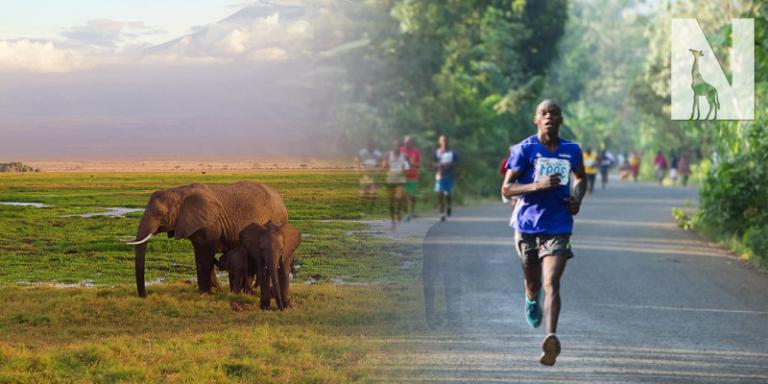 Kili-Tanzania-Safari-Header