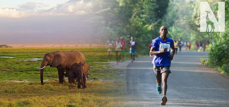 Kilimanjaro Marathon & Tanzania Safari