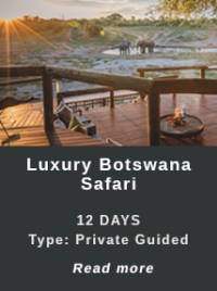 Luxury-Botswana-Safari