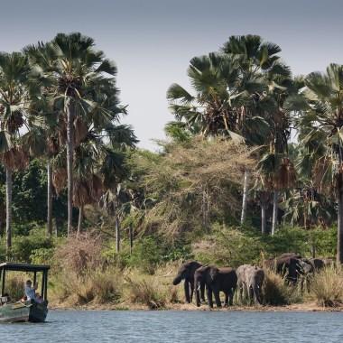 Malawi and Zambia Wildlife Safari