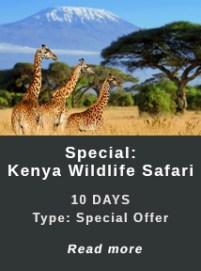 Kenya-Special-Wildlife