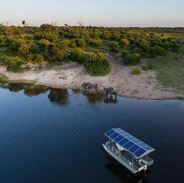 Boat-cruise-in-Chobe-(2)
