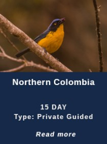 Northern-Colombia
