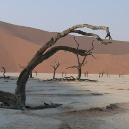 Travel to Namibia with Nature Travel Namibia's Classic Namibia Safari