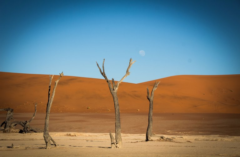 Sossusvlei with Nature Travel Namibia