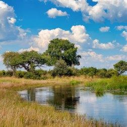 Bwabwata-NP-landscape-(1)