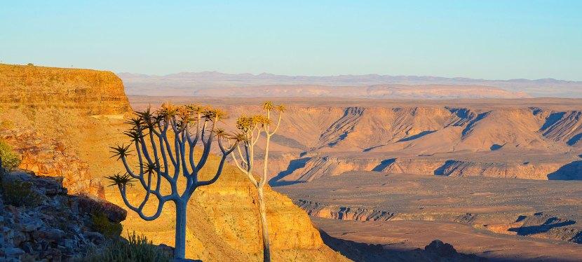 Southern Namibia Safari