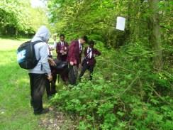 Nature Surey School Group Streatham Common
