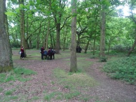 Nature Vibezzz Streatham Common Lambeth London Insect hunt school students