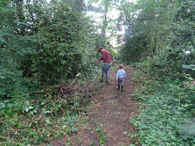 Kingihts Hill Wood - Capital Clean Up-5