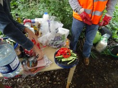 Kingihts Hill Wood - Capital Clean Up day-5