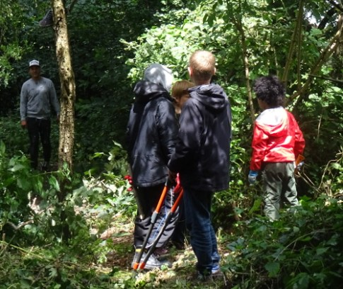 Knights Hill Wood Capital Clean Up 27-6-16 Lambeth Nature conservation tree coppicing Home education free activity.JPGDSC01486