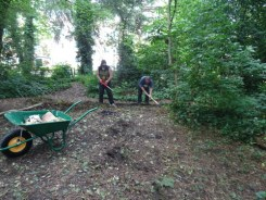 Knights Hill Wood Capital Clean Up 27-6-16 Lambeth Nature conservation volunteers Home education free activity