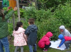 Nature Vibezzz free insect hunt Deptford Park London