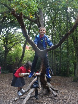 granton-primary-free-nature-school-forest-school-lambeth-12